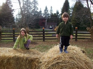 Kids love our farm-themed play structures, climbable straw sculptures, and farm animals
